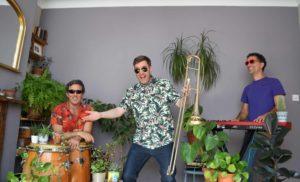 Trio Latino Wedding musicians play York wedding